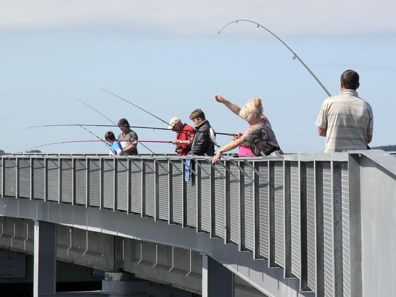 Рыбалка на мосту 777